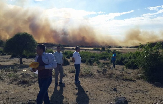 Yangında 50 Hektar Alan Küle Döndü