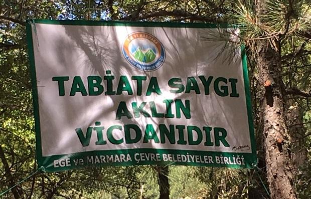 Torba Yasayla Orman Yağmasına Yeni Kapılar Açılıyor