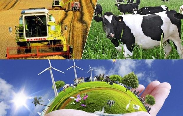 Çanakkale'nin Ekonomik Geleceği: Tarım ve Yenilenebilir Enerji'de...