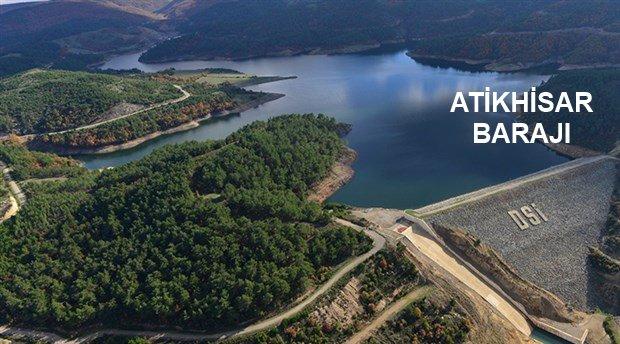 """Altın Madeni Projesi: """"Yaklaşık 1 Milyon Ağaç Kesilecek"""""""