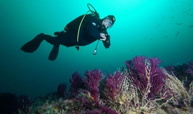 Çanakkale Boğazı'ndaki Batıklara Dalış Turizmi Başladı