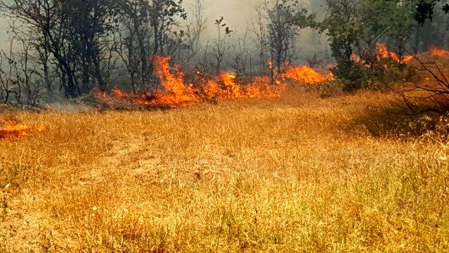 Şimdide Kumkale'de Yangın Çıktı
