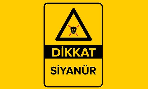 Çanakkale'nin Ölüm Fermanı İmzalandı!
