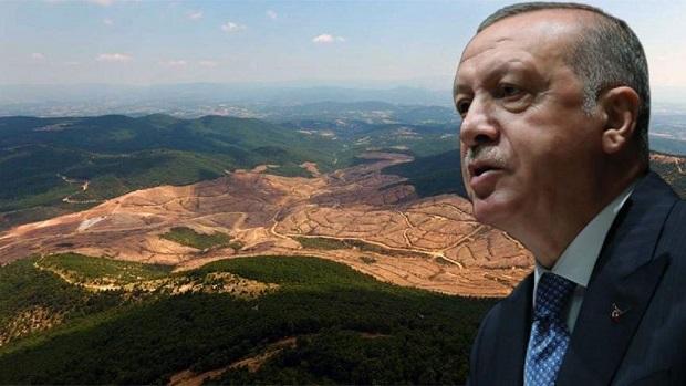 Erdoğan'dan Kazdağları'na Gelme Kararı