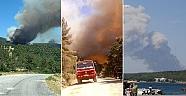 1 Aydır Orman Yangınlarıyla Boğuşuyoruz!