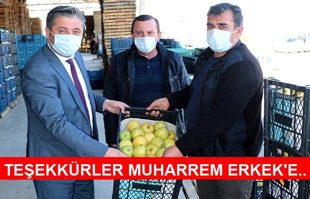 Bayramiç Elmasını Üç Büyükşehir Belediyesi Satın Alıyor