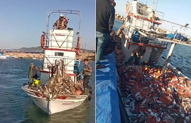 11 Metrelik Tekneyle 15 Bin Lüfer Yakaladılar